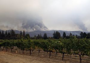 California wine country fires