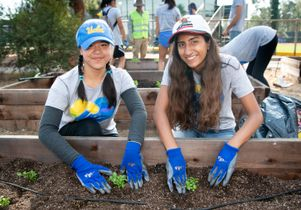 UCLA volunteers at Veterans Garden