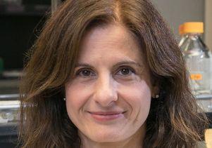 Dr. Inma Cobos