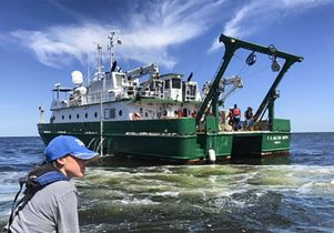 Research in Gulf of Mexico