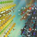 monolayer atomic crystal molecular superlattices