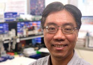 UCLA professor Hon Wai Koon