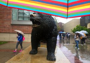 Rainy day near Bruin Bear