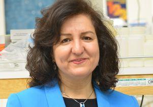 Dr. Mansoureh Eghbali-Senior Author