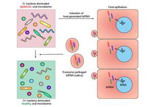 RNA oral microbiome