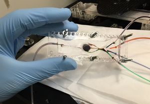 <em>Amir Miri</em><br>The 3D bioprinter designed by Khademhosseini has two key components: a custom-built microfluidic chip (pictured) and a digital micromirror.