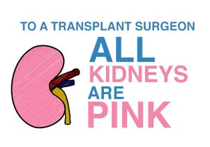 All Kidneys are Pink graphic