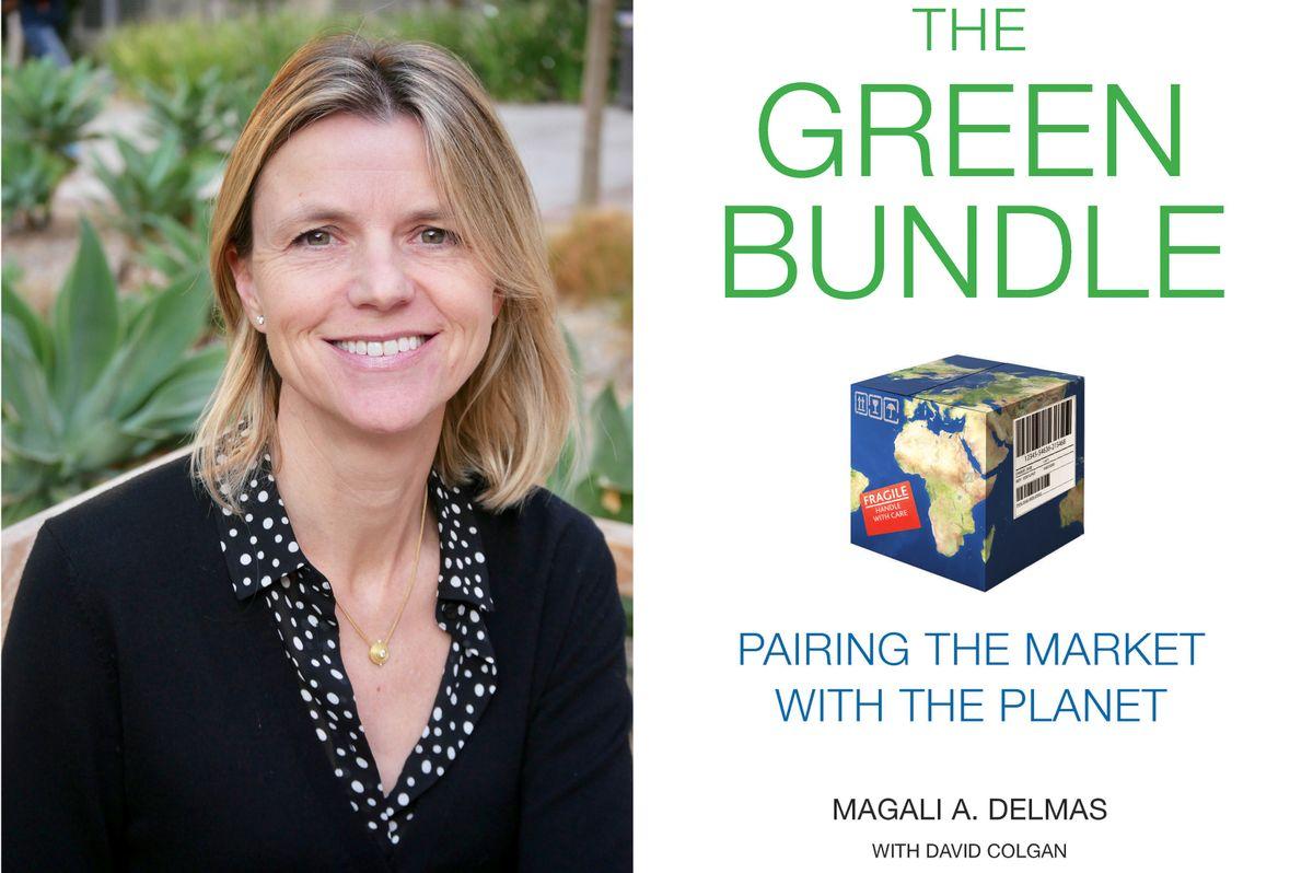 Magali Delmas book
