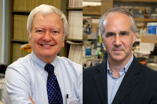 Michael Jung and Dr. Daniel Geschwind