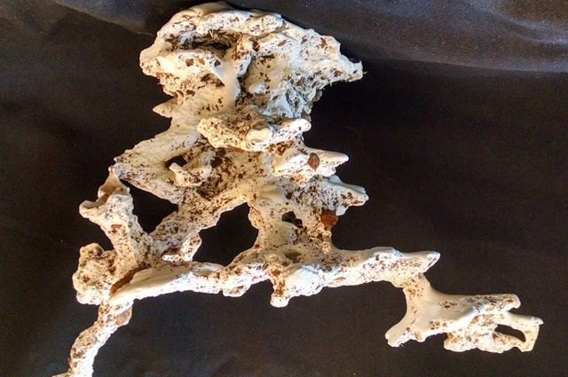Plaster cast of ant colony nest