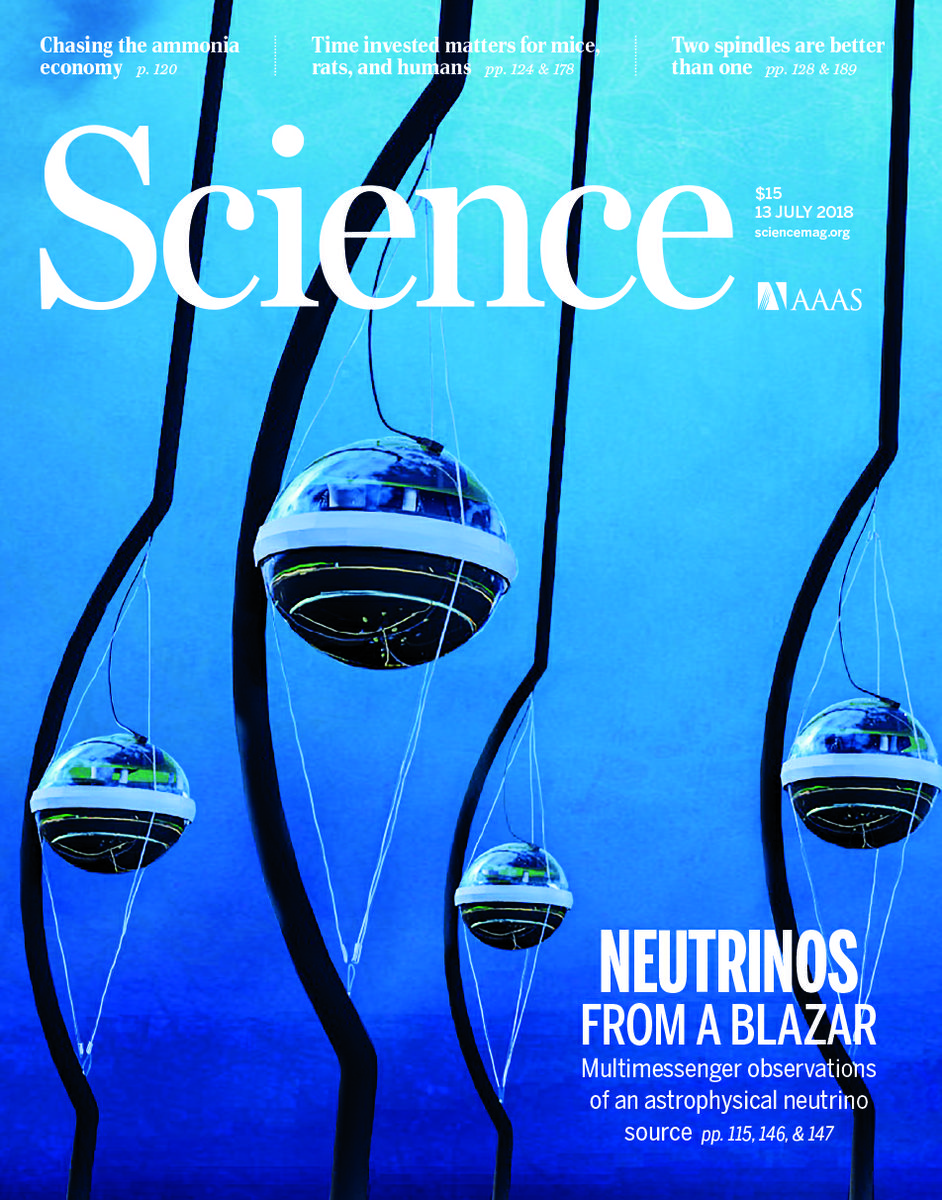 Jamie Yang Savannah Guthrie  IceCube  NSF