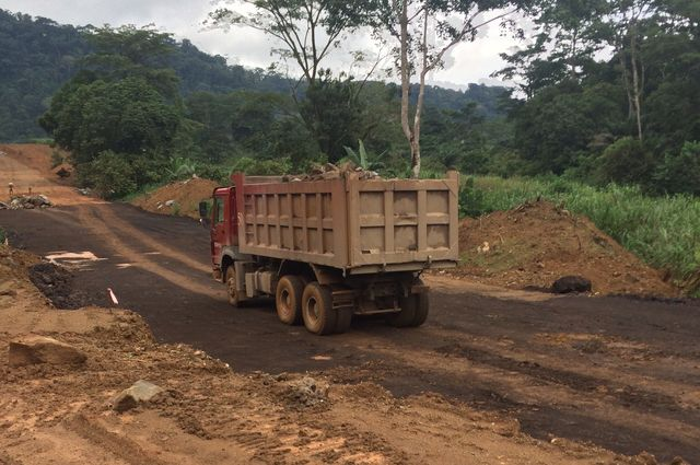 Cameroon deforestation