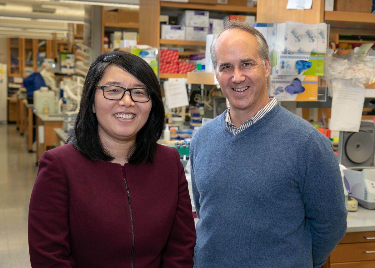 Xinshu (Grace) Xiao, Dr. Daniel Geschwind