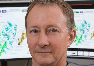 Steve Jacobsen