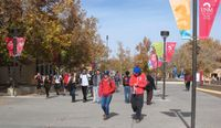 UNM students on Cornell Mall