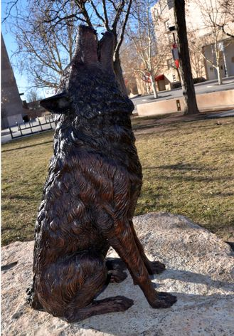 Bronze Lobo statue at Johnson Gym