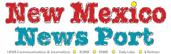 News Port Web Logo