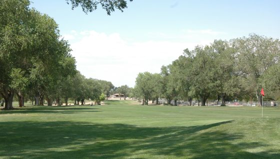 UNM North Golf Course Fairway