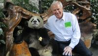 Doug Brown in Chengdu