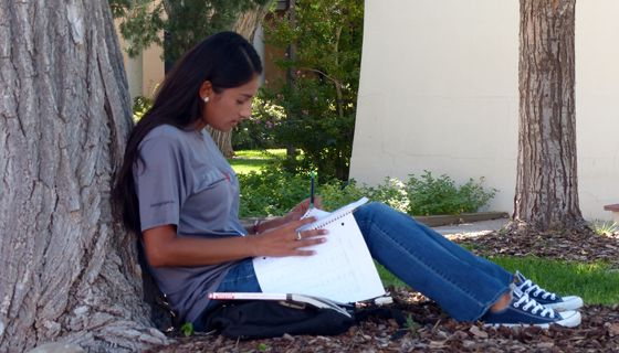Student studying on UNM campus