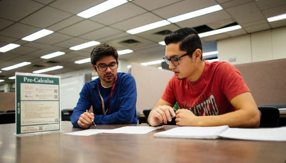 CAPS pre-calculus tutoring