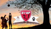 SYSP 2015