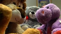 BeKind Teddy Bear Donation