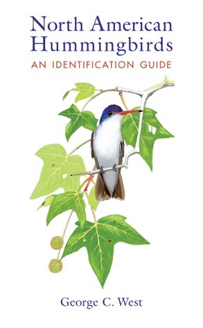 North American Hummingbirds