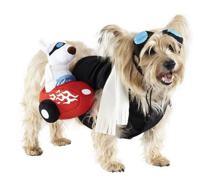 Side Car Pet Costume - $13