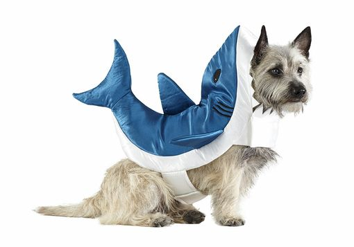 Shark Pet Costume - $10 – $14