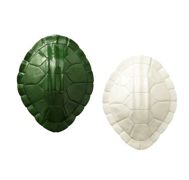 Nate Berkus Lacquer Tortoise Wall Accessory in Green and Cream (also available in Yellow)