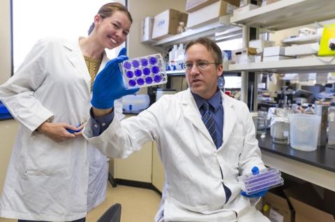 Steven Bradfute and Elizabeth Clarke look at Zika vaccine research samples.