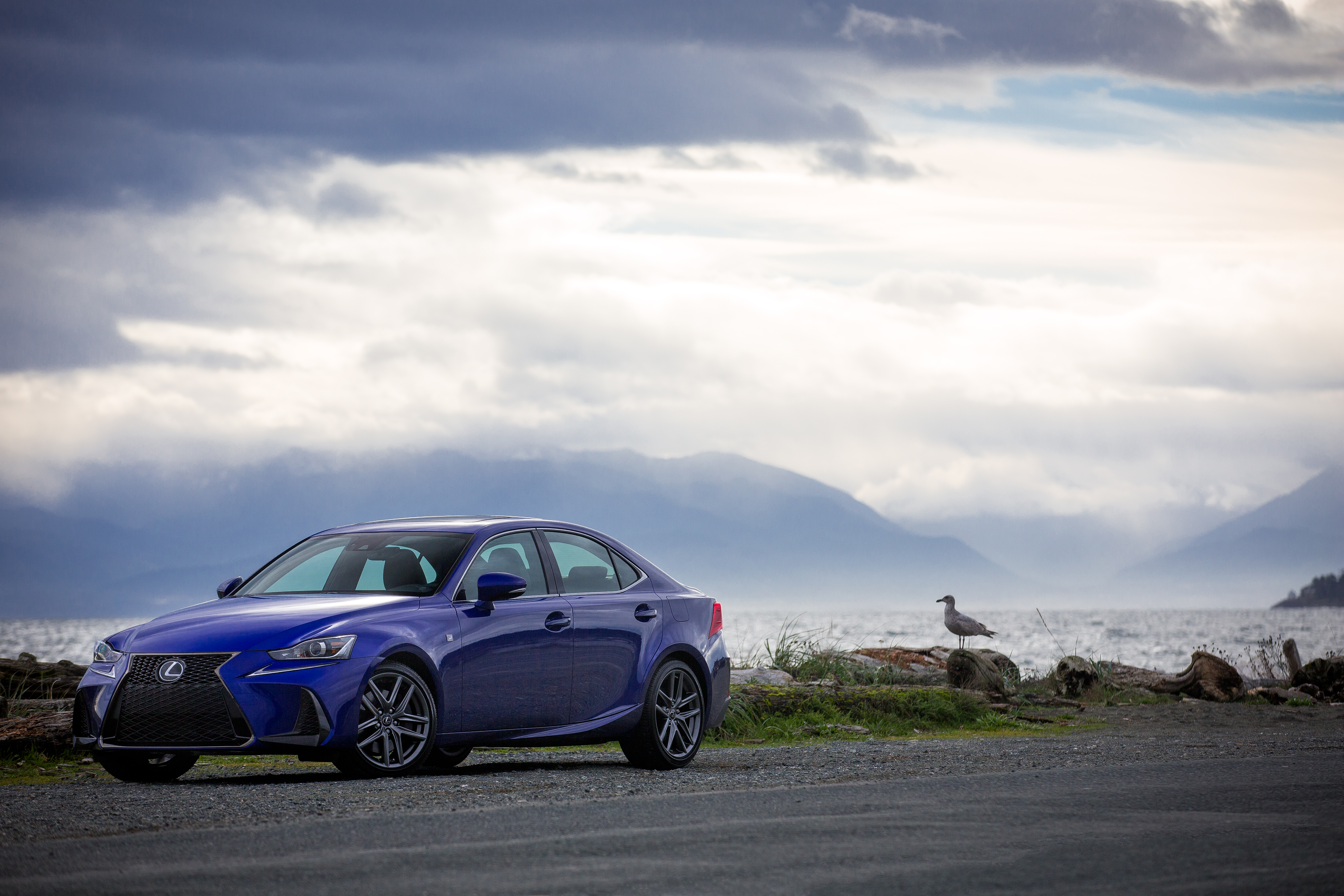 Become one with the road in the transformed 2017 Lexus IS