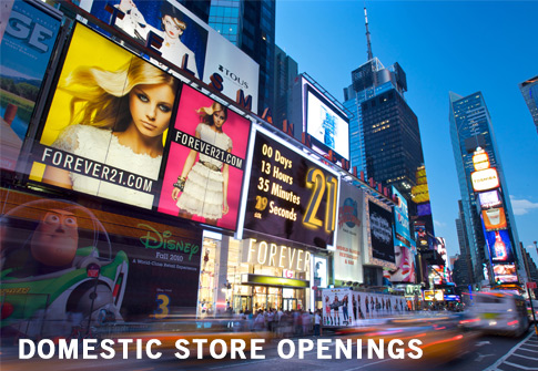 Domestic New Store Openings