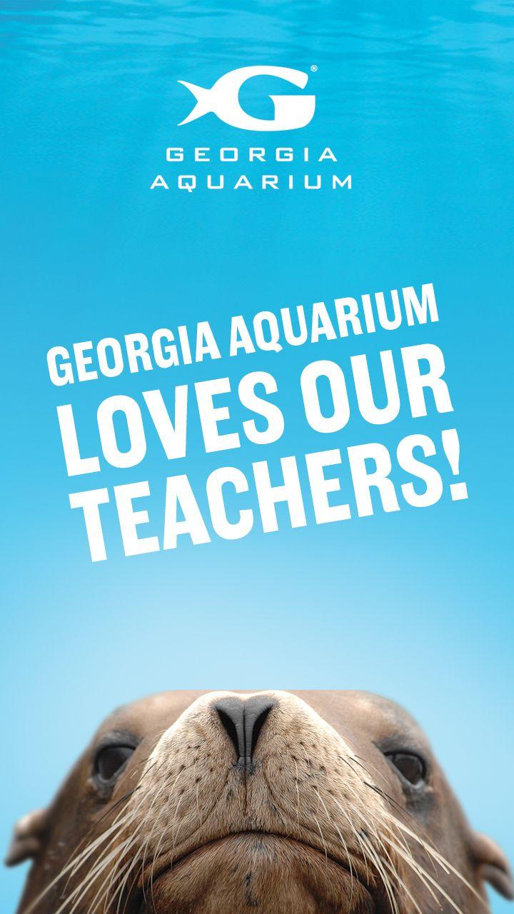 GAI Loves our teachers