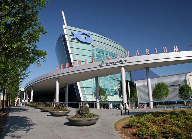 Georgia Aquarium Earns Humane Certification from American Humane