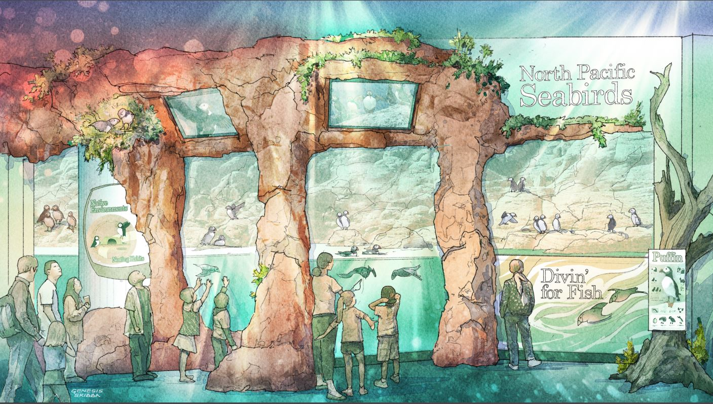 Puffin and Seabird Exhibit Rendering
