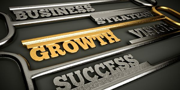 Common Growth Strategies