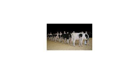 11.03.13 Dairy thumb