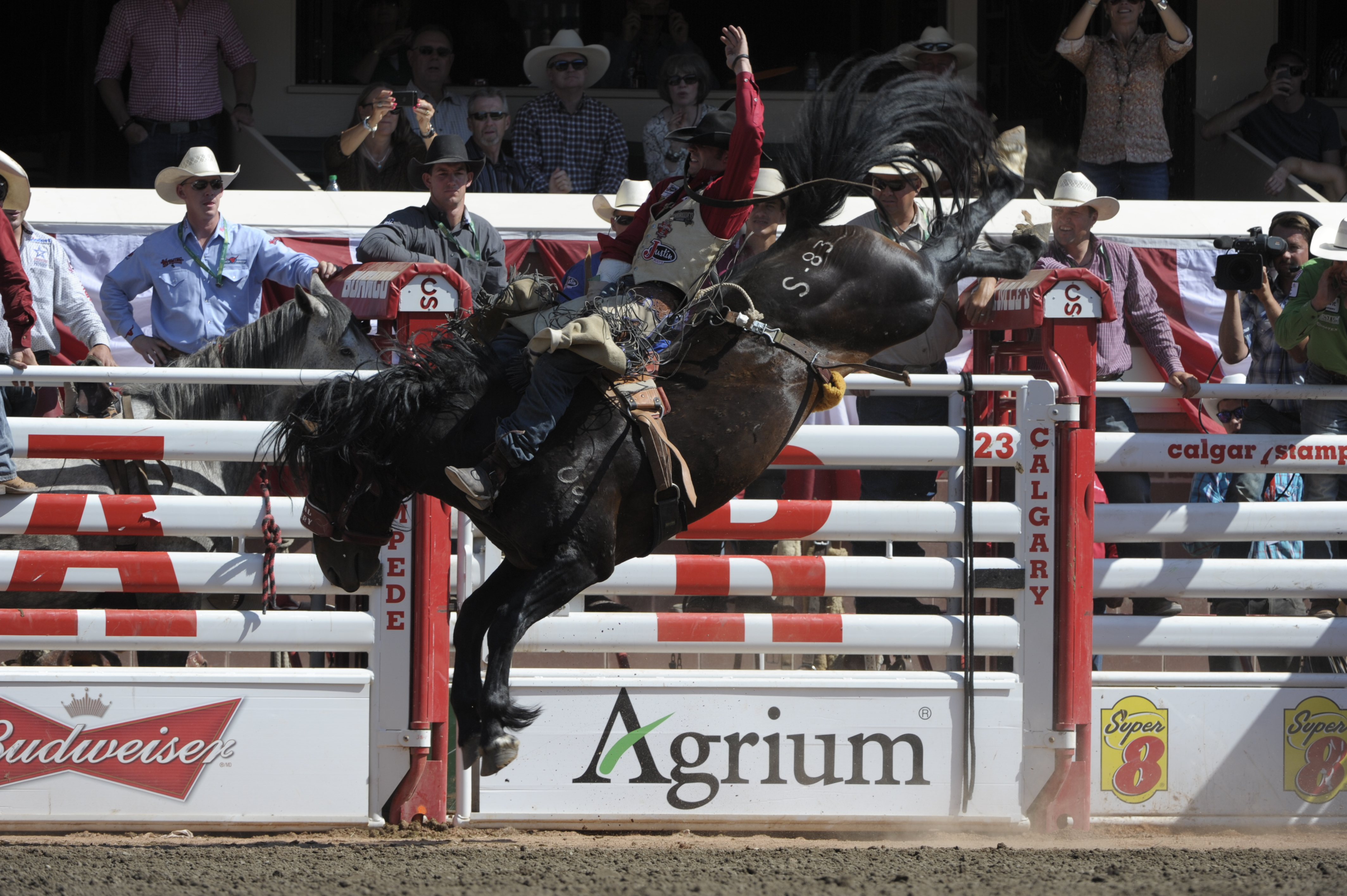 World S Top Rodeo Champions Will Buckle Up For 2015