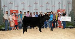 UFA Junior Steer Classic, Grand Champion Katie Serhienko
