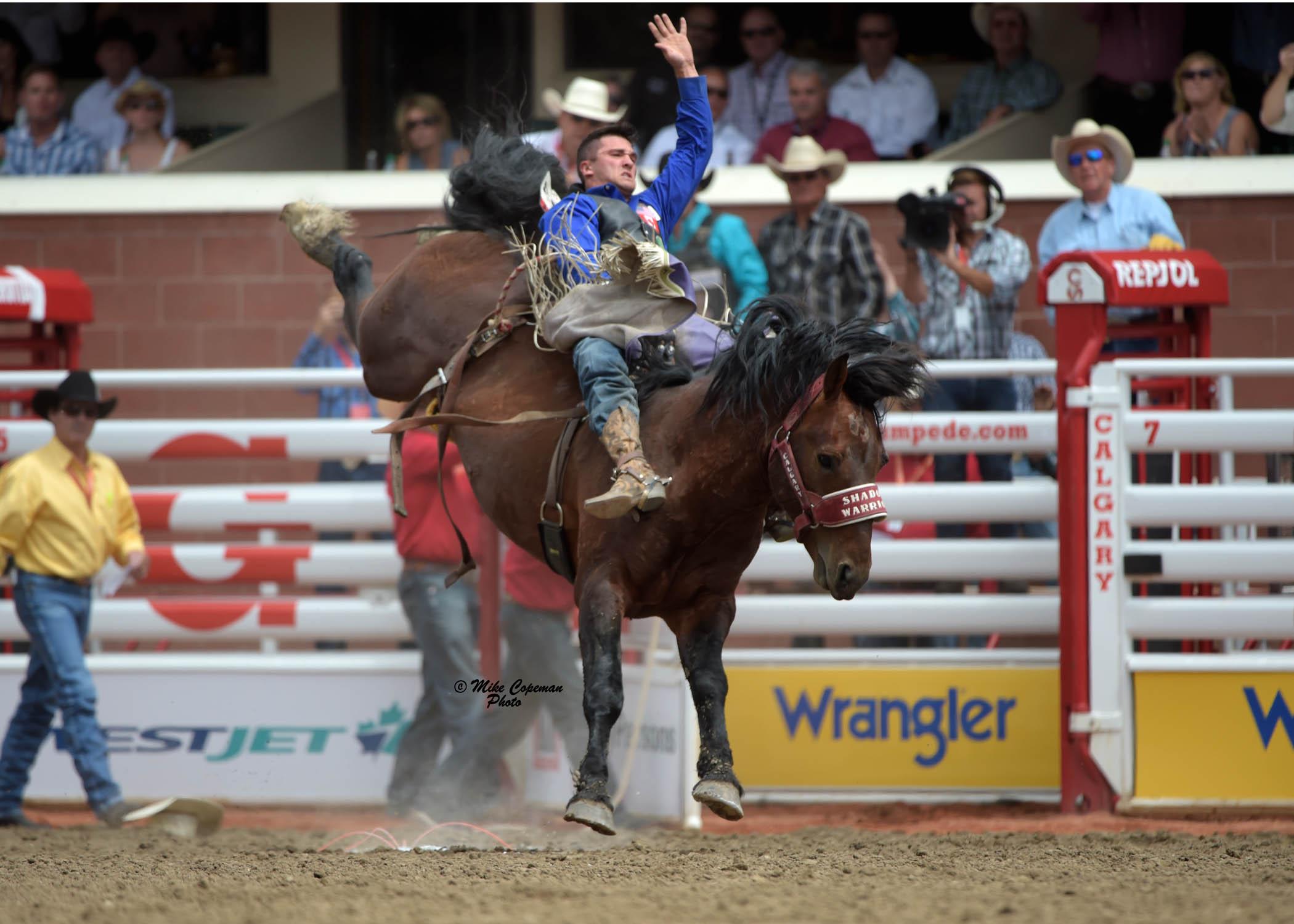 Utah Cowboys And Calgary Stampede Horses Dominate Day One