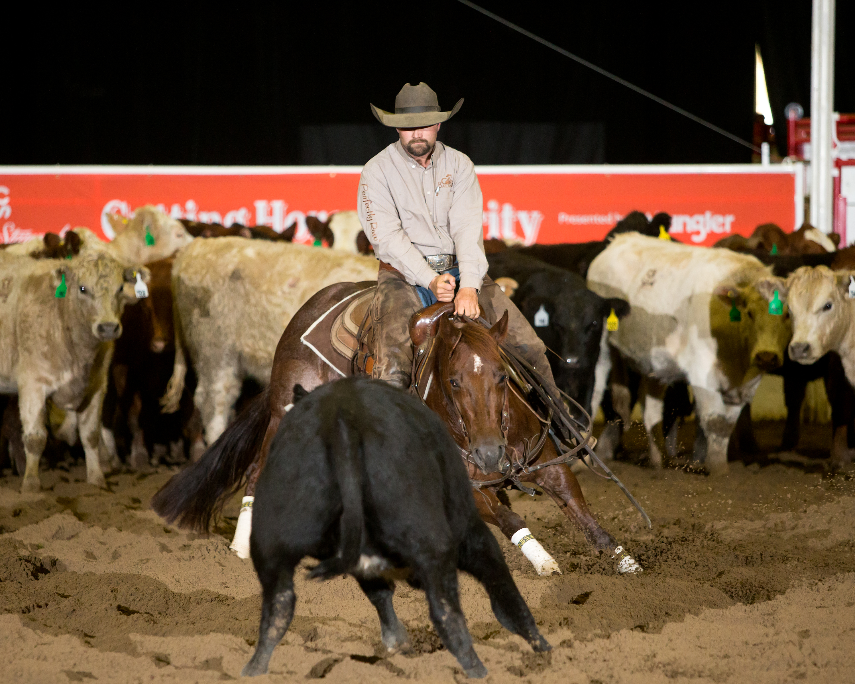 Calgary Stampede Cutting Horse Futurity Welcomes Top