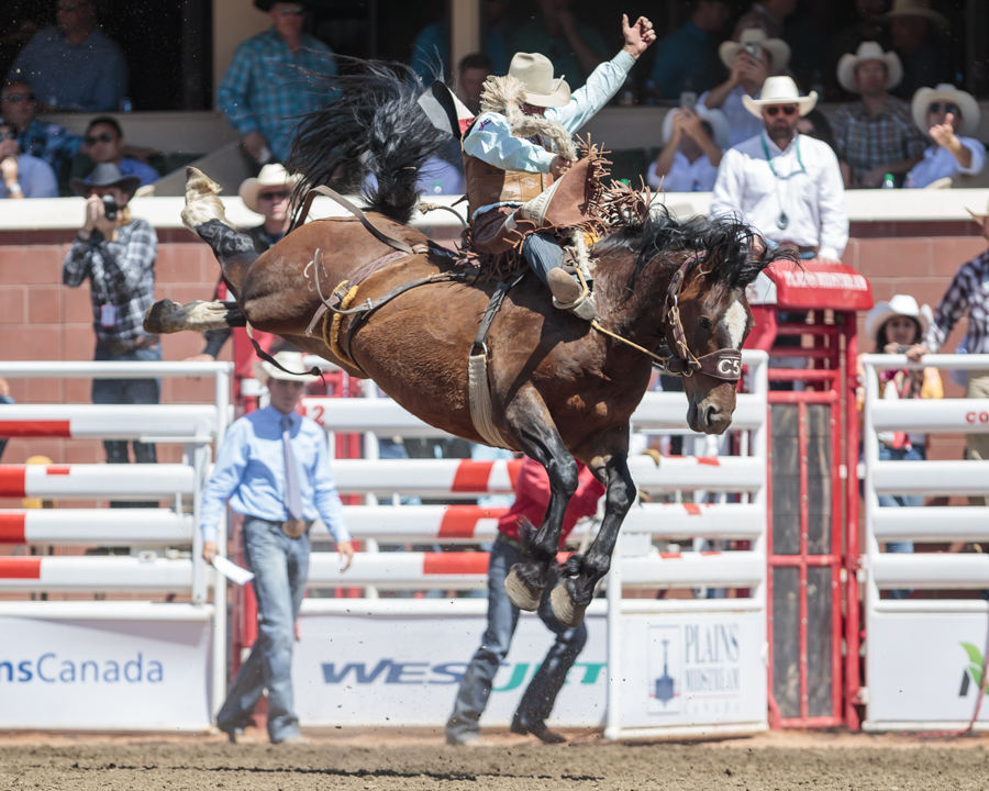 Rodeo Competitors Double Down As Pool A Action Comes To A