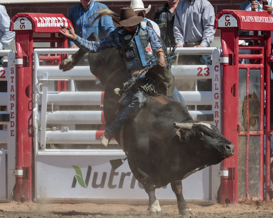 Calgary Stampede Rodeo Pool B Action Wraps With Big Rides