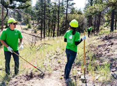 Recent Wildfires Stark Reminder of Importance of Restoration Efforts