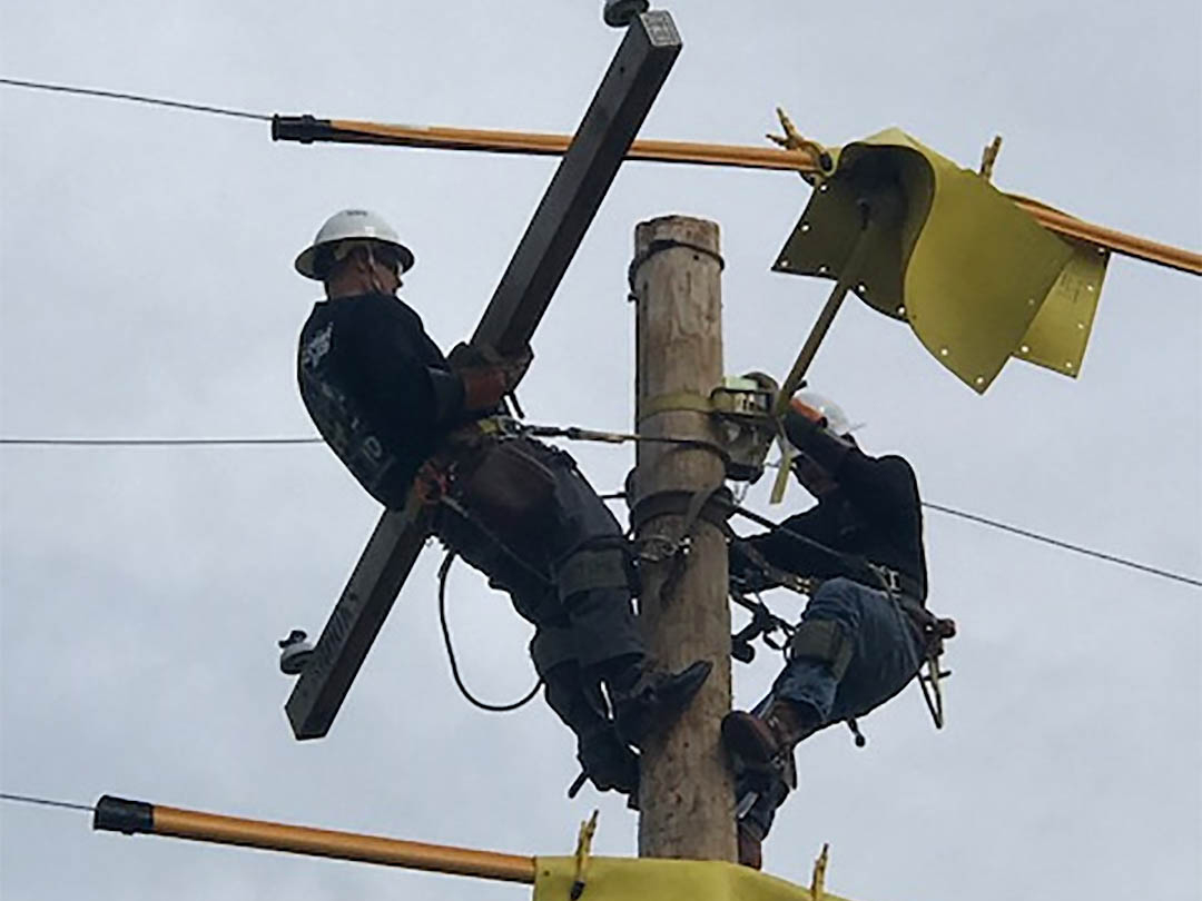 Lineman's Rodeo - Senior Division