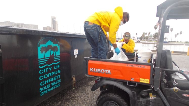 Red tide Clean Up
