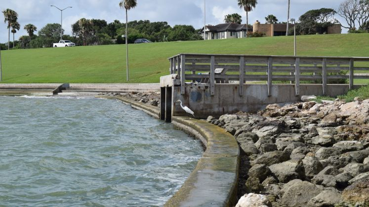 Drainage System at Cole Park