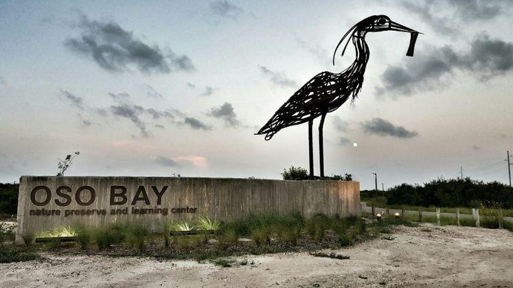 Oso Bay Nature Preserve at dawn